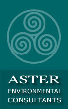 Aster Environmental Consultants